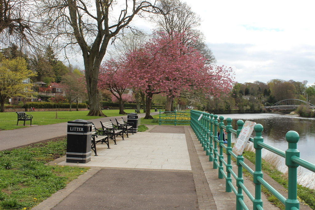 Dock Park Dumfries